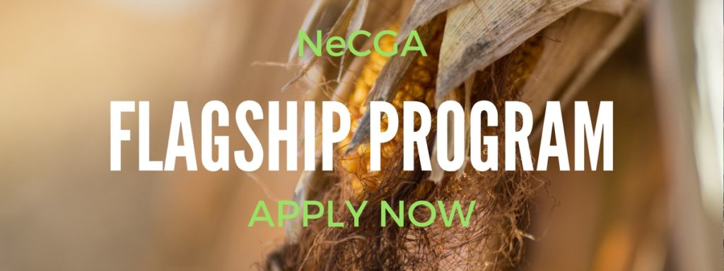 Now Accepting Applications for FLAGship Program