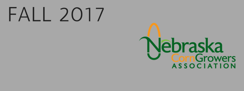 Hot off the Presses, NeCGA's Fall Newsletter