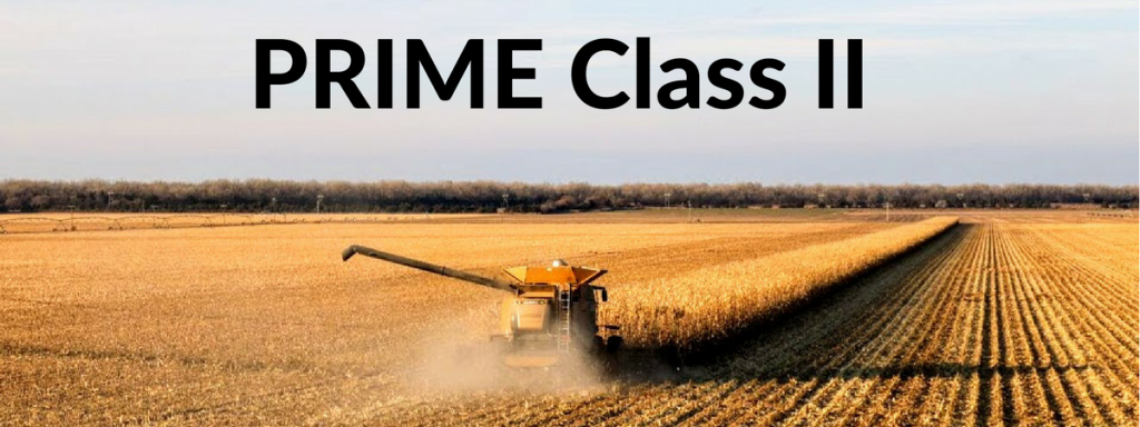 Apply NOW for the PRIME Program!