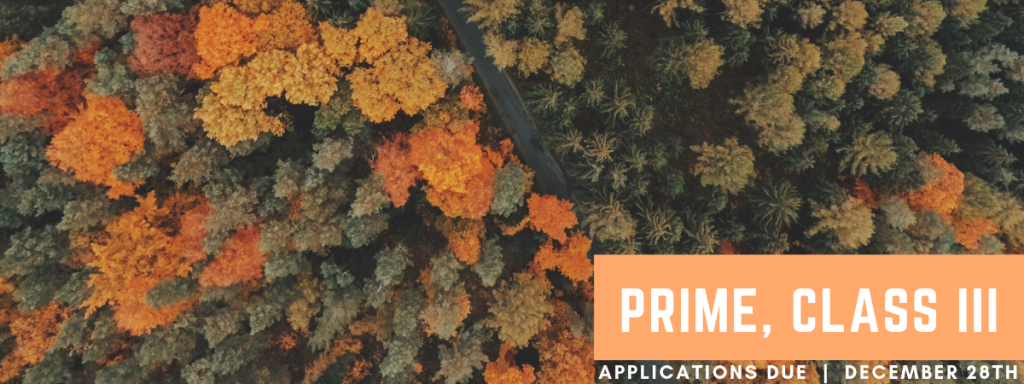 Apply Today for PRIME Class III